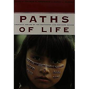 Vägar i livet: indianer i sydvästra och norra Mexiko