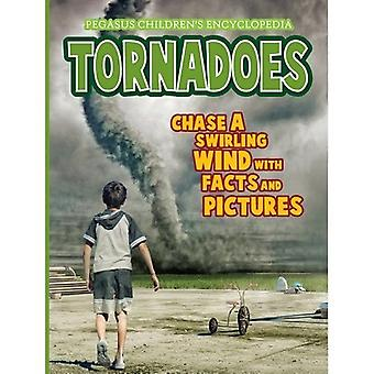 Tornadoesnatural Disasters