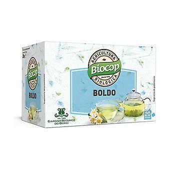 Boldo 20 infusion bags