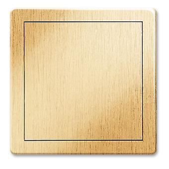 Bunte schlagfestem ABS Kunststoff Zugangstür Inspektion Panel verschiedene Farben Größen