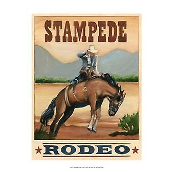 Stampede Rodeo Poster Print by Ethan Harper (13 x 19)