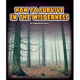How to Survive in the Wilderness (Survival Guides (Child's World))
