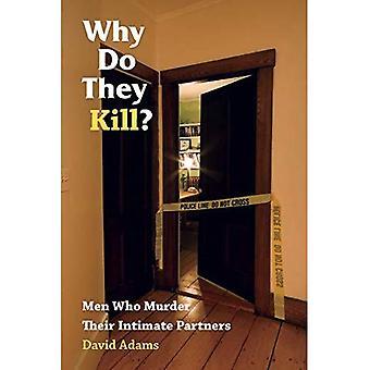 Pourquoi ils tuent?: hommes qui tuent leurs partenaires intimes