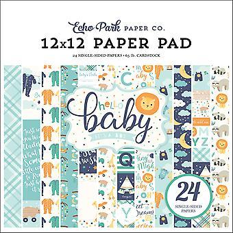Echo Park Hello Baby Boy 12x12 Inch Paper Pad