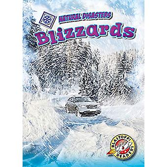 Blizzards by Betsy Rathburn - 9781644870242 Book