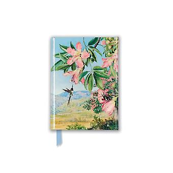 Kew Gardens Marianne North Honeyflowers and Honeysuckers Foiled Pocket Journal by Created by Flame Tree Studio