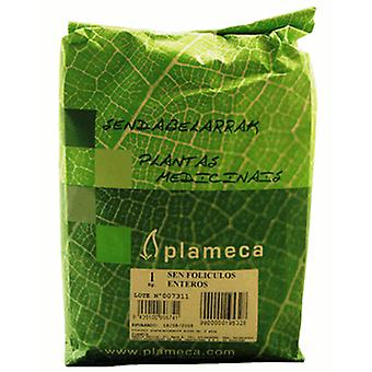 Plameca Sen hele follikels (Food, Beverages & Tobacco , Beverages , Tea & Infusions)