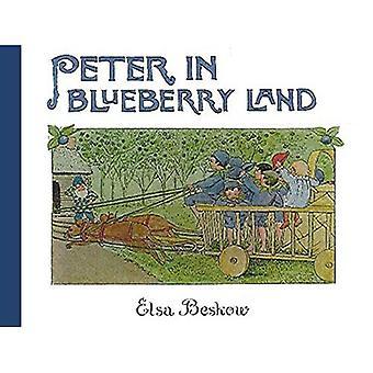 Piotra w ziemi Blueberry
