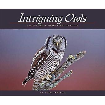 Intrigerende uilen: Buitengewone beelden en inzicht