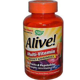 Leven! Volwassen multi-vitamine fruit smaken (90 gummies)-natuur ' s Way