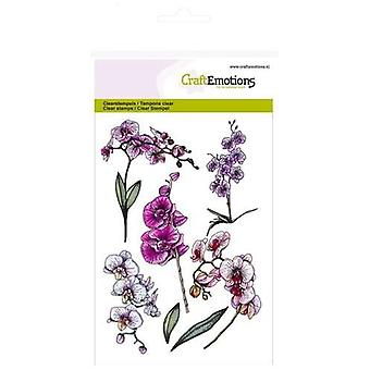 Craftemotions A6 Clear Stamps - Orchid Branches