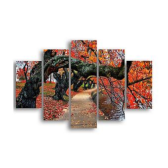 Tree Lined Avenue Framework 420 Mehrfarbig in MDF, L19xP0.3xA40 cm (2 Stück), L19xP0.3xA50 cm (2 Stück), L19xP0.3xA60 cm (1 Stück)