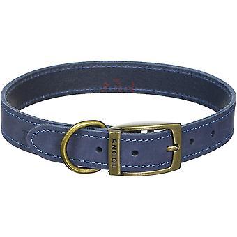 Ancol Timberwolf Leather Collar - Blue - 22 inch
