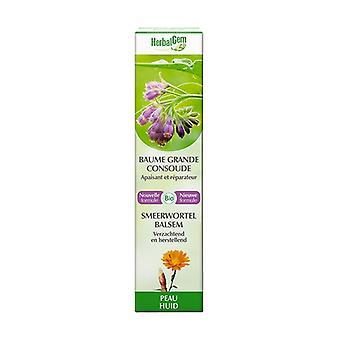 Ekologiskt komfreyläppbalsam 10 ml grädde
