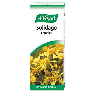 A. Vogel Solidago Complex, 50ml