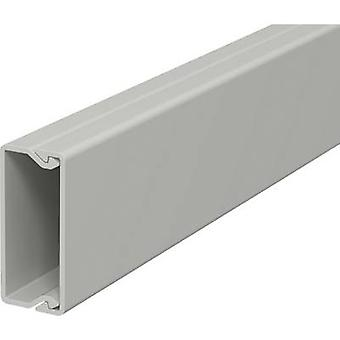 OBO Bettermann 6189466 Cable duct (L x W x H) 2000 x 15 x 40 mm 1 pc(s) Grey
