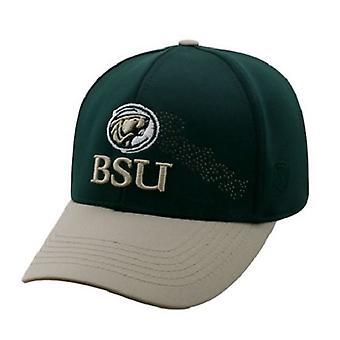 Bemidji State Beavers NCAA TOW Progress Stretch Fitted Hat