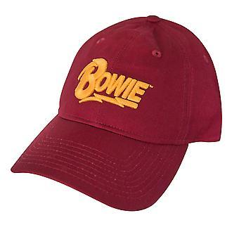 Sombrero de logotipo de texto de David Bowie