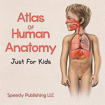 Atlas Of Human Anatomy Just For Kids by Publishing LLC & Speedy