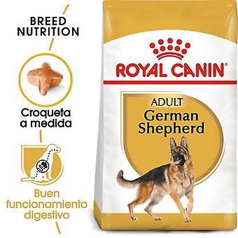 Royal Canin German Shepherd Adult Dog Food German Shepherd (Dogs , Dog Food , Dry Food)