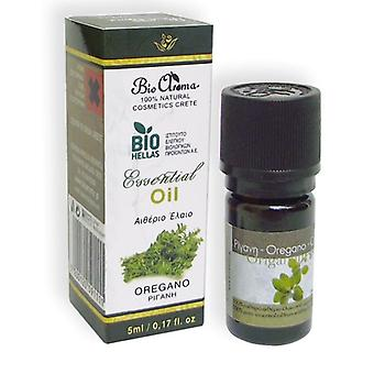 Oregano pure essential oil