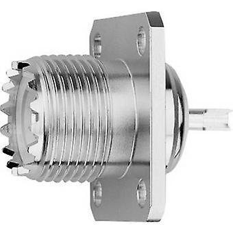 Telegärtner J01041B0632 UHF connector Socket, built-in 50 Ω 1 pc(s)