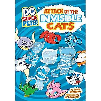 Angriff der unsichtbaren Katzen