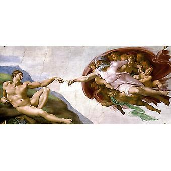 De creatie van Adam, Michelangelo Buonarroti, 80x36cm