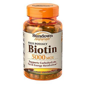 Sundown naturals Biotine 5000 mcg, capsules, 60 ea