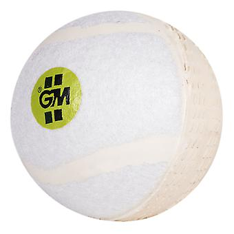 Gunn & Moore Swingking Cricket Ball Bianco