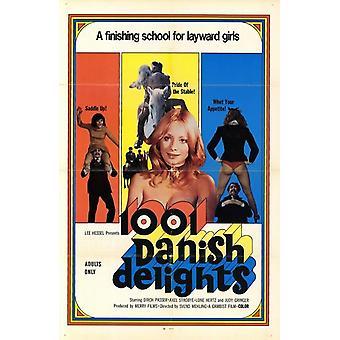 1001 Delights1Movie danés Poster (11 x 17)