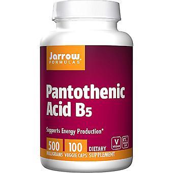 Vitamin B5 Pantothensyre 500mg 100 Kapsler