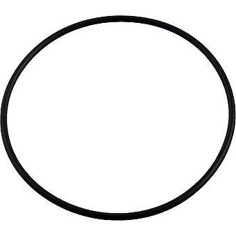 Cubierta de Jandy zodiaco 1132 + válvula O-Ring