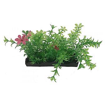 Penn Plax Green und Pink Bunch Plants Medium - 1 Zählung
