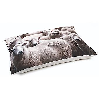 Beeztees Lounge Dog Cushion