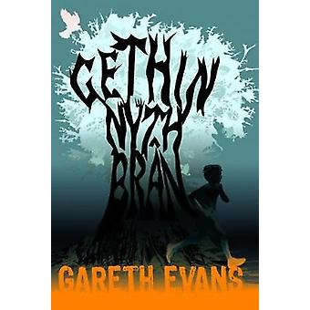 Gethin Nyth Bran by Gareth Evans - 9781845276249 Book