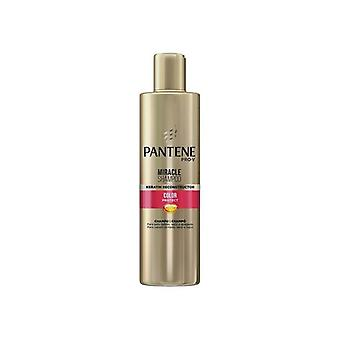 Shampoo capilar Teints Miracle Color Protect Pantene (270 ml)