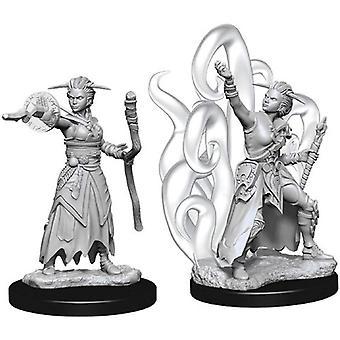 Human Female Warlock Dungeons & Dragons Nolzurs Marvelous Miniatures (Pack of 6)