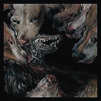 Okkultokrati - Night Jerks [Vinyl] USA import