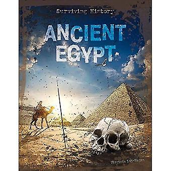Ancient Egypt (Surviving History)