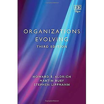 Kehittyvät organisaatiot: kolmas painos