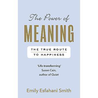 O Poder do Significado: O verdadeiro caminho para a felicidade Paperback - 7 de setembro de 2017