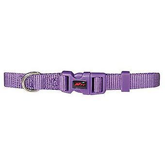 Nayeco Collare di base in nylon viola (Cani , Collari, guinzagli e pettorine , Collari)