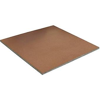 Proma 108100 010030 COBRITHERM Carrier Plate