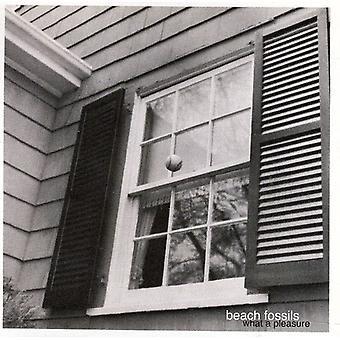 Beach Fossils - What a Pleasure [CD] USA import