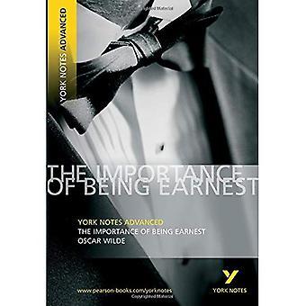 The Importance of Being Ernst (York Notes geavanceerde)