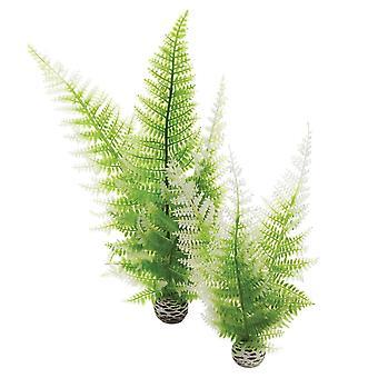 BiOrb Winter Ferns Plant Pack
