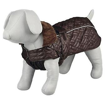 Trixie Rouen coat Brown (Dogs , Dog Clothes , Coats and capes)