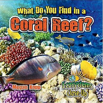 What Do You Find in a Coral Reef? by Kopp - Megan - 9780778722779 Book