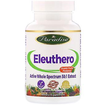 Paradise Herbs, Eleuthero, 120 Vegetarian Capsules